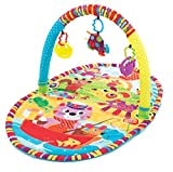 Playgro Play in the Park Baby Gym Toy