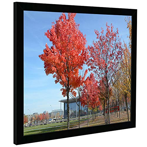 Medog 10x12 inch Satin Black Picture Frame Black 10 by 12-Inch Picture Poster Frame, Smooth Finish, Non-Glass Without Mat for Display Certificate/Photo 10x12 for Wall Mount Frames (P1E 1012 1P) (Frames Glass 10 12 Photo X)