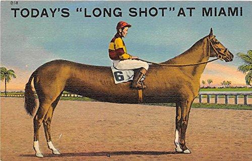 Today's Long Shot Miami, Florida, FL, USA Old Vintage Horse