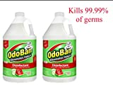 OdoBan 1 Gal Concentrate 2-Pack, Cucumber Melon Scent - Odor Eliminator, Disinfectant, Flood Fire Water Restoration