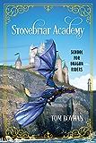 Stonebriar Academy: School for Dragon Riders