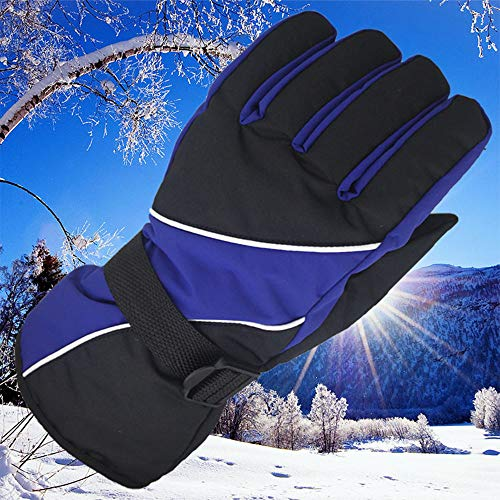Simperlive Snowboard Gloves,Waterproof & Windproof Snow Gloves for Skiing, Snowboarding, Shoveling Fits Men & Women (Color : Sapphire)