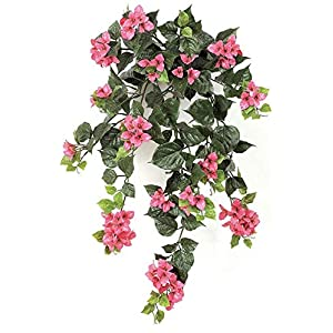 36 Inch Outdoor Bougainvillea Bush - Polyblend UV Foliage White, Cream 4