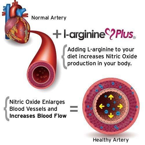 #1 L-Arginine Plus - Multi Flavor 3-Pack - for Better Blood Pressure, Cholesterol, Energy, Blood Flow, Muscle Development & More - #1 L-arginine Supplement - Get 1 Bottle of Each Flavor by Elements of Health Care (Image #5)