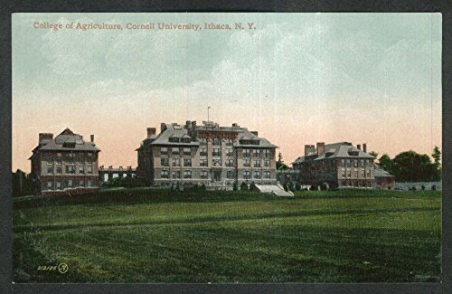 College of Agriculture Cornell University Ithaca NY postcard 1920s from The Jumping Frog