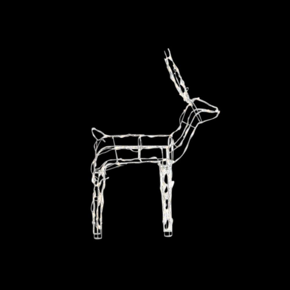 Home Accents 48 in. 120-Light LED Wire Buck by Home Accents