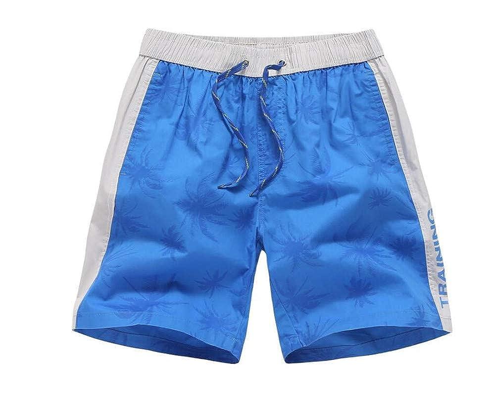 Blue,XX-Large ZWEILI Summer Mens Beach Shorts Breathable Seaside Fashion Swimming Trunks