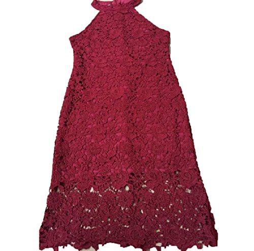 Hem Red Lace Pure Sleeveless Short Dress Wine Zipper Women Coolred Colour Fitted Sexy SIqO4Rn