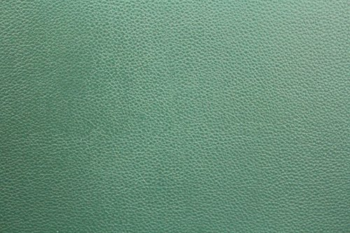 Home Comforts LAMINATED POSTER Green Leather Background Post