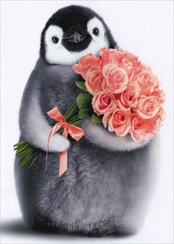 Amazon Penguin With Flower Bouquet Avanti Birthday Card