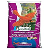 Morning Melodies 409-202 Premium Year-Round Bird Seed 4.54kg, 1 Piece, Small