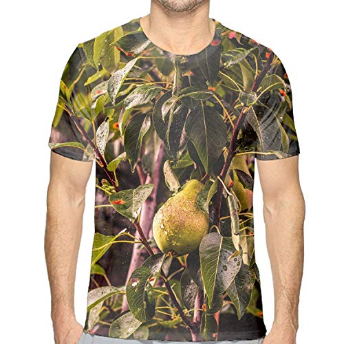 (Mens Pear Tree Branch Drops Short Sleeve T Shirts Loose Fit Casual Tee Tops)