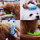 Dog & Cat Brush for Pets with Short to Medium