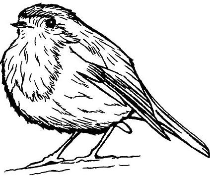 RS00008666 Unmontiert A7 Netter Robin Vogel Stempel