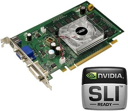 Amazon.com: PNY Verto GeForce 8500 GT 512 MB tarjeta de ...
