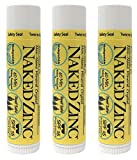 The Naked Bee Non-Nano Zinc Lip Balm Sunscreen SPF 15 (0.15 Ounce) Pack of 3 – Reef Safe, Paraben-Free, No Mineral Oil, No Chemical Absorbers