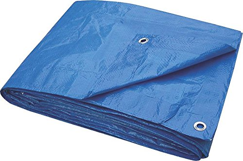 TOOLBASIX T1012BB70 Light Duty Tarp, 10-Feet x 12-Feet, Blue