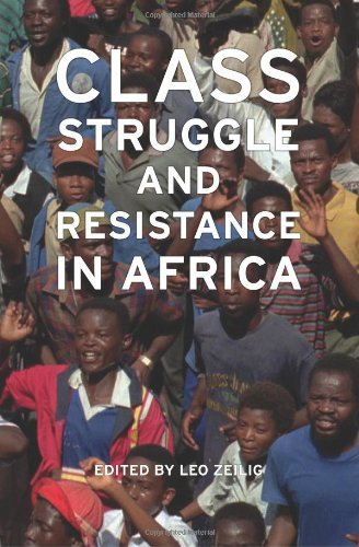 Class struggle in times of crisis: conceptualising agency of resistance