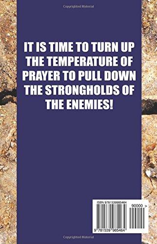 Turn Up Prayer Pull Down Strongholds Devotional Journal Mona T
