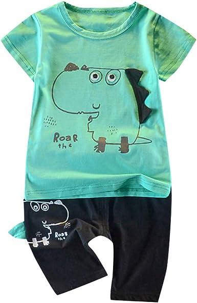 Conquro Camisa de Manga Corta con Estampado de Dinosaurios 3D de Dibujos Animados Lindo para niños + Shorts de Dos Piezas 0-4 años: Amazon.es: Ropa y accesorios