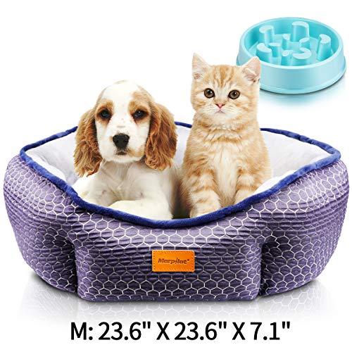 Comprar Cama Gato, Cama Perro Pequeño, Cama para Mascotas con Suave Cojín Desmontable, Lavable a Máquina, Sofá Cama para Gatos y Perros