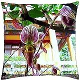 Paphiopedilum Scarpetta Orchidee-Throw Pillow Cover Case (45,7x 45,7cm)