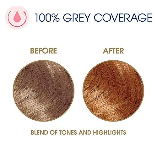 a158de9e4abb8 Jual Clairol Nice  N Easy Permanent Hair Color Kit