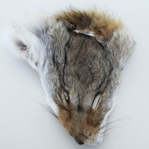 Authentic Real Fur Coyote Head Face -