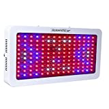 1500w led grow lights for indoor plants,HollandStar Full Spectrum Grow Light Led For Plants Veg And Flower With 3 Years Warranty