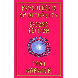 Psychedelic Spirituality: Second Edition