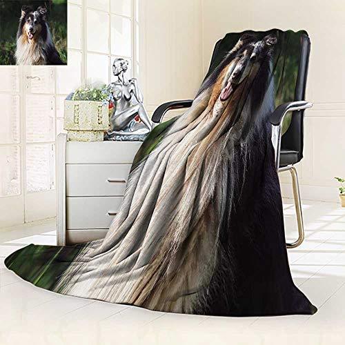 YOYI-HOME - Manta de Verano Ligera y dúplex Impresa, Retrato de estantería para Perro en una Cama Natural, sofá,...