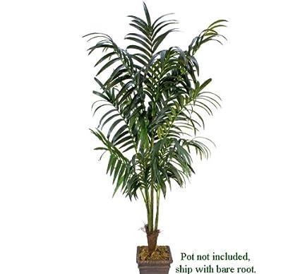 e0f412e82ea Amazon.com  ONE 8.5  Extra Full Artificial Kentia Palm Tropical Tree ...