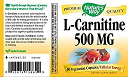 Nature\'s Way L-Carnitine 500 MG, 60 Vcaps