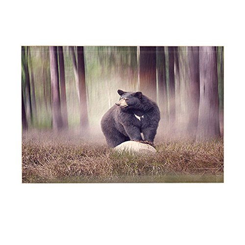 NYMB Foggy Forest Animals Decor, Black Bear on a Rock in the Woods Bath Rugs, Non-Slip Doormat Floor Entryways Indoor Front Door Mat, Kids Bath Mat, 15.7x23.6in, Bathroom Accessories by NYMB