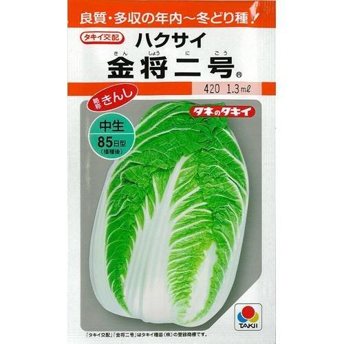 白菜 種 金将二号 缶 1dl B00NHD4XR8