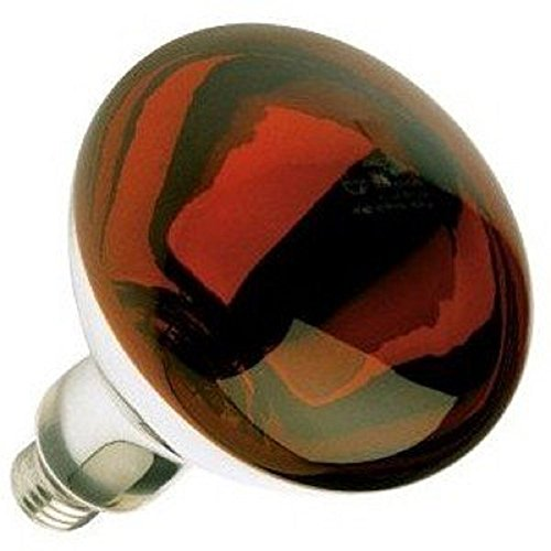 Red Heat Lamp 250 Watts BR40 5,000 Hours Long Life Medium E26 Base Light Bulb Industrial Grade, Red