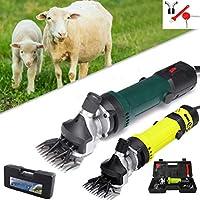 Changli Esquiladora para ovejas Profesional eléctrica 850 W