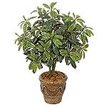 AUF001-37-Inch-Outdoor-Rhododendron-Bush-Polyblend-UV-Foliage