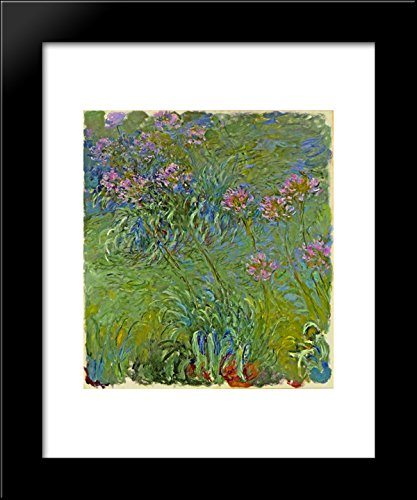 Agapanthus Flowers 20x24 Framed Art Print by Monet, Claude ()