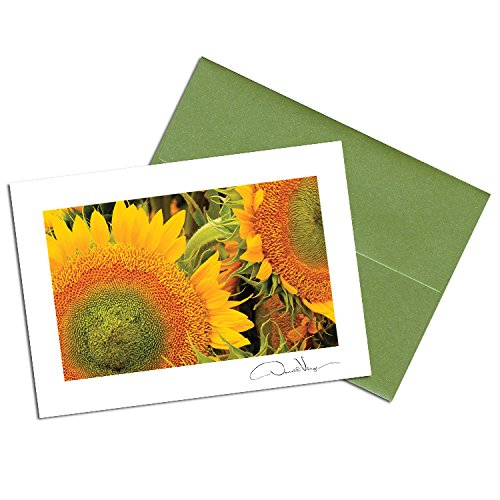 Donald Verger Photography Sunflowers Invitations