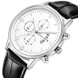 Zaidern Men Watches,Men's Watch Luxury Casual Analog Quartz Wristwatches Classical Retro Simple Design Business Dress Waterproof Date Stainless Steel Leather Band Round Dial Wrist Watches Clock