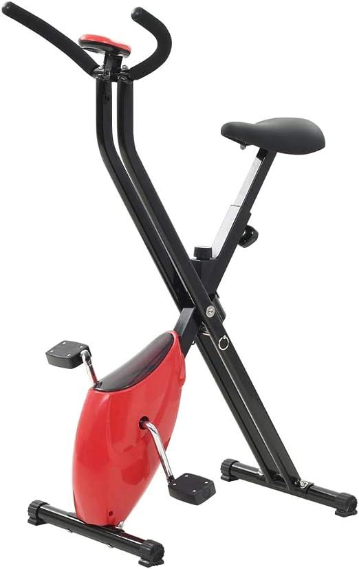 Festnight Bicicleta Estática Bici de Ejercicios Diseño Plegable X ...