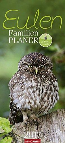 Familienplaner Eulen - Kalender 2017