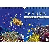 Träume unter Wasser (Wandkalender 2016 DIN A4 quer): Eindrücke aus der Unterwasserwelt (Monatskalender, 14 Seiten) (CALVENDO Tiere)