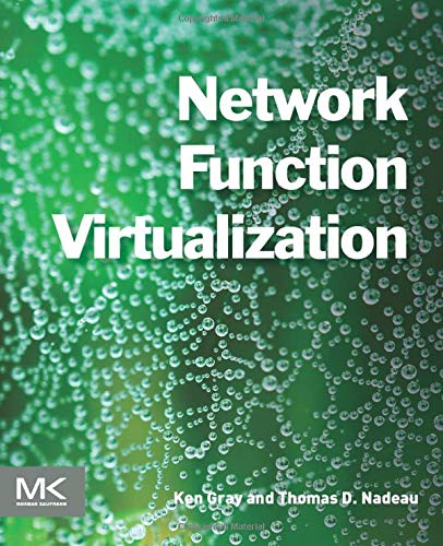 Network Function Virtualization (Translation Network Address)