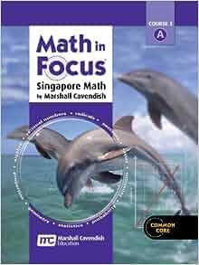 math focus grade 8 textbook pdf