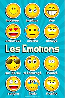 Amazon french language poster greetings and common phrases emotions poster french m4hsunfo