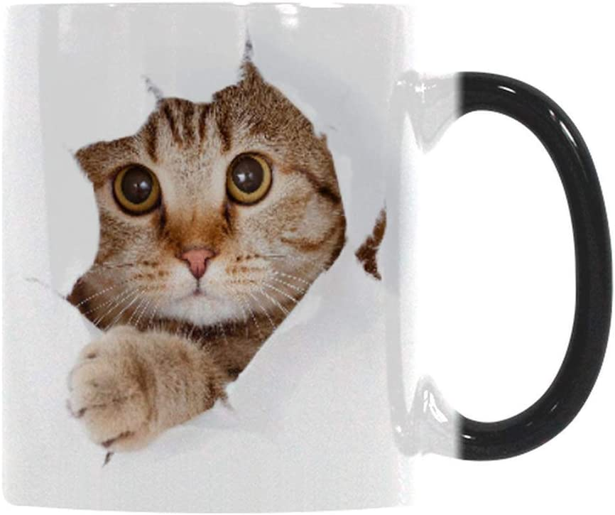 Heat Changing Mug, Caliamary Funny Cat Heat Changing Ceramic Coffee Mug, 11 oz Heat Sensitive Color Changing Coffee Mug Cup, Cute Xmas Gift Mug for Women Men Kids (Cat)