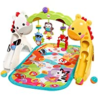 Fisher-Price Newborn-to-Toddler Play Gym (Multi Color)