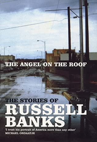 book cover of The Angel On the Roof